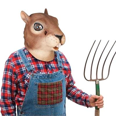 Click to get Squirrel Mask